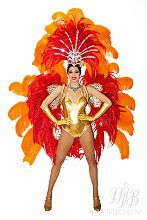 Бразильский карнавальный костюм. Крылья и корона из перьев